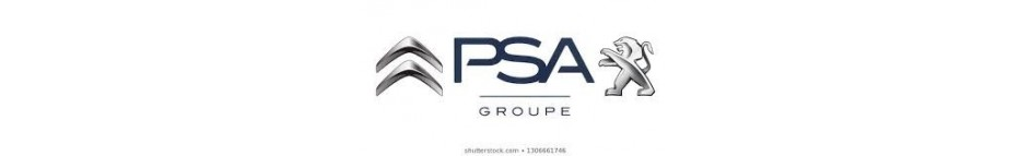 Peugeot / Citroen (PSA)